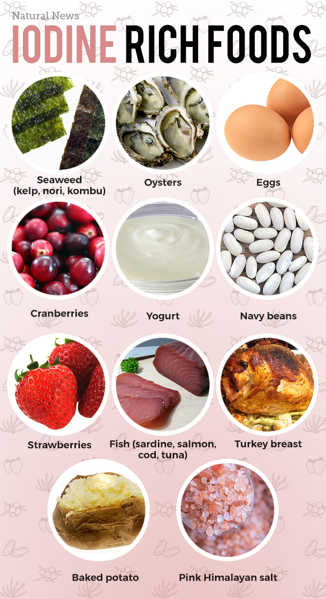 Good Food Sources Of Iodine